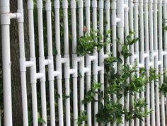 While cruising Flickr, (What did we do with our spare time before?) we came across this fence made from PVC Pipes in Galveston, Texas. We have all seen PVC fencing before as vinyl fencing is everywhere these days, although usually it looks more like a traditional fence. We were impressed with the...