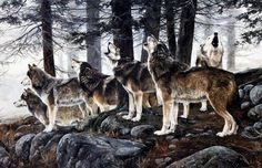 In the art print Primal Song by Andrew Kiss, the wolf pack is sounding a warning that they are prowling the area. Wolves howl for a variety of reasons. Pack members will chorus howl to defend their te