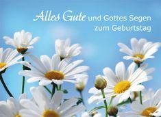 Geburtstagskarte - Alles Gute und Gottes Segen | LOGO  #logobuchversand #anzeige #geschenk #geschenkidee #geburtstag #geburtstagskarte #segen #geburtstagsgeschenk #LOGO