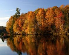 North Bay, Ontario in Autumn Autumn Scenes, O Canada, Weekends Away, Fall Photos, My Happy Place, Esl, Ontario, Ticket, Places Ive Been