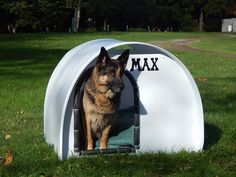 ADVERTISEMENT 10 Most Unwanted Cheap Dog kennels Like us, dogs deserve a suitable place for themselves. Yes, our pets may stay inside the house sometimes,. Barrel Dog House, Pallet Dog House, Cheap Dog Kennels, Diy Dog Kennel, Cheap Dog Houses, Cat Houses, Dog House Heater, Big Dog House, Plastic Dog House