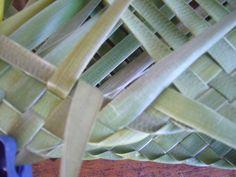 P1210336 Card Weaving, Weaving Art, Weaving Patterns, Basket Weaving, Flax Weaving, Flax Flowers, Weaving Techniques, Paper Crafts, Visor Cap