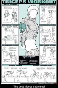 Another Series of Printable Workouts for your whole body. If you go to the Gym and you find your self getting bored. Than you are not tra...