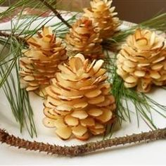 Would be cool with yule logs or a woodland theme cake. Marzipan or fondant center with slivered almonds. Would be cool with yule logs or a woodland theme cake. Marzipan or fondant center with slivered almonds. Christmas Appetizers, Christmas Sweets, Christmas Cooking, Christmas Log Cake, Christmas Entertaining, Christmas Chocolate, Green Christmas, Winter Desserts, Köstliche Desserts