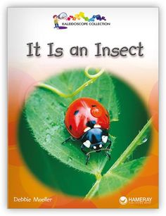 Explore what bees, butterflies, and other six-legged creatures have in common with this Spanish informational text about insects!
