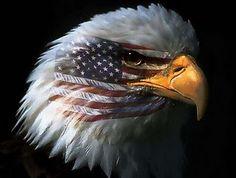 Very cool Flag/Eagle