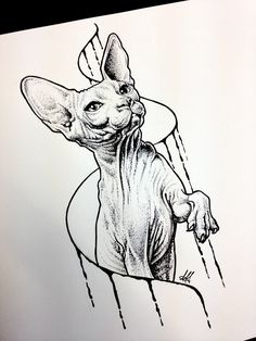 Sphynx cat sketch tattoo by AntoniettaArnoneArts.deviantart.com on @DeviantArt