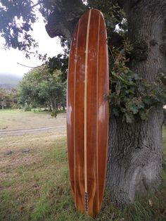 57 Best Our Wood Surfboards Images Surfboard Surfboards Cape Town