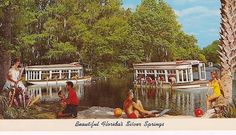 Your place to buy and sell all things handmade Florida City, Old Florida, Vintage Florida, State Of Florida, Mexico Vacation, Vacation Places, Silver Springs Florida, Glass Bottom Boat, Romantic Vacations
