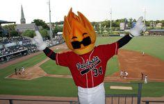 Blaze....our VSU mascot turned 10 years old.