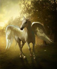Pegasus by EnchantedWhispers.deviantart.com on @deviantART