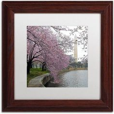 Trademark Fine Art Washington Blossoms Canvas Art by CATeyes, White Matte, Wood Frame, Size: 16 x 16, Green