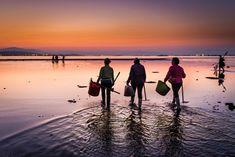 Playa de Raposiños al amanecer. Las mariscadoras de A Pobra comienzan a faenar.