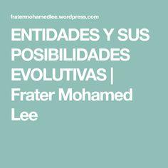 ENTIDADES Y SUS POSIBILIDADES EVOLUTIVAS | Frater Mohamed Lee