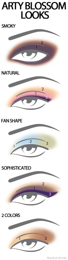 Eye makeup shapes