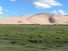 Khongoryn Els Sand Dunes, Gobi Desert