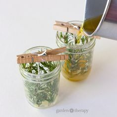 Make your own pressed herb candles using herbs harvested from your very own garden. They make great gifts or home decor.