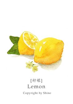 Lemon #watercolor