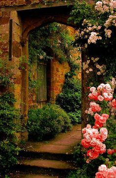 Garden with a past . Beautiful gorgeous pretty flowers
