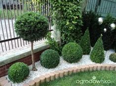 Advice, tricks, also manual for acquiring the most ideal outcome as well as making the maximum utilization of Front House Landscaping Back Gardens, Small Gardens, Outdoor Gardens, Front House Landscaping, Small Backyard Landscaping, Landscaping Ideas, Acreage Landscaping, Mailbox Landscaping, House Landscape