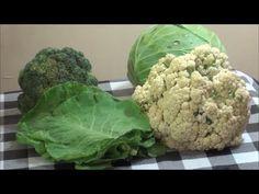Vegetais na dieta 80/10/10 viva crua frugal - Quais vegetais consumir no crudivorismo - YouTube