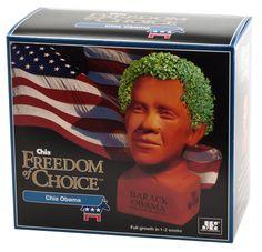 Chia Obama gift box