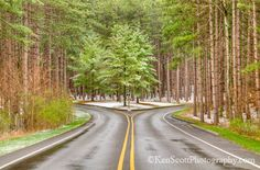 Fork in the Road . Ken Scott, Fork In The Road, Cross Country Skiing, Countryside, Paths, Entrance, Michigan, Places To Go, Cycling