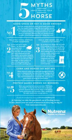 5 Myths of Feeding Horses: Hay is enough, pelleted feeds, by products, feeding corn to horses, and protein in horse feeds