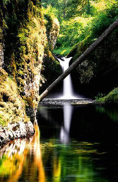 Punch Bowl Falls   Is on the Eagle Creek Trail in the Columbia River Gorge National Scenic Area //by Steven Warnstaff