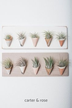 Decorate your home with these beautifully handcrafted ceramic wall planters by Carter & Rose. They are the perfect vessels to hold air plants, flowers and so much more. Each planter is handmade and no two are exactly alike. Visit the shop to view the enti