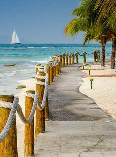 """Palm Island Resort"""