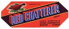 Red Chatterer brand Old Florida Citrus Crate Label Bartow Florida, Orange Crate Labels, Vegetable Crates, Florida Oranges, Vintage Florida, Wood Crates, Vintage Labels, Vintage Advertisements, Fruit