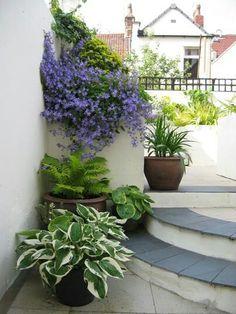 Outdoors - Plants grace this home in the city. / Katherine Edmonds Garden Design, UK