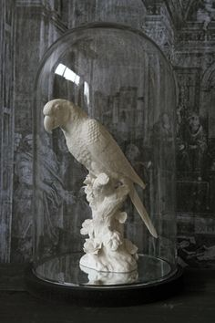 Large White Parrot Ornament (optional Display Dome & Mirrored Base)