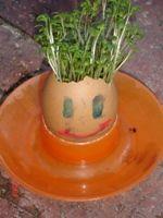 preschool activities/crafts for spring