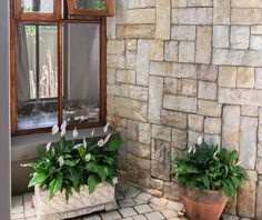 We are importers, suppliers and installers of natural stone cladding, tiles and adhesives offering the highest quality & best prices in the tiling industry. Natural Stone Cladding, Stone Feature Wall, Adhesive Tiles, Water Features, Natural Stones, Mountain, Walls, Building, Nature