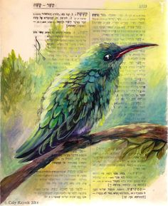 Hummingbird by TrollGirl on deviantART