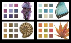 Inside Fairie-Ality Style - color palettes from nature