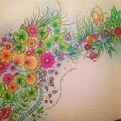 #johannabasford #secretgarden #prismacolor #fabercastell #polychromos #enchantedforest #lostocean #adultcoloring #coloringforadults
