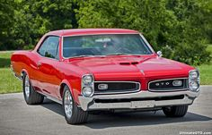 1966 Pontiac GTO ( Almost identical to my 1967 GTO, except my grill was silver and my car had a Black Vinyl top. )