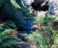 Waterfall and the Grotto, Everglades, Leura Blue Mountain, Historic Homes, Landscape Architecture, Waterfall, Home And Garden, Gardens, Colour, Mountains, Park