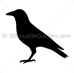 Crow silhouette clip art. Download free versions of the image in EPS, JPG, PDF, PNG, and SVG formats at http://silhouettegarden.com/download/crow-silhouette/