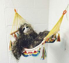 anthropologie sloth