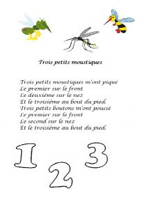 Comptine trois petits moustiques - Dessine-moi une histoire French Poems, Petite Section, Grande Section, French Immersion, Kids Songs, Learn French, Place Card Holders, Math, Learning