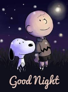 Look real close, this is not Snoopy and Charlie Brown; it's Chloe and Charlie Rogers! Snoopy Love, Charlie Brown Und Snoopy, Snoopy And Woodstock, Peanuts Cartoon, Peanuts Snoopy, Peanuts Movie, Snoopy Quotes, Peanuts Quotes, Joe Cool