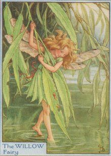 The Willow Fairy, is an antique Tree Fairy print by Cicely Mary Barker, she is dipping her toe in the water while holding onto a willow leaf, dressed beautifully all in green with her fairy wings out behind her.