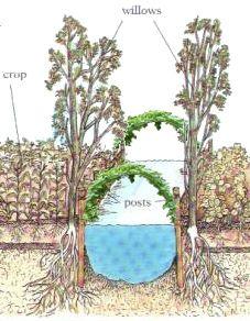 Trellises Extending Over Channels for Easy Harvesting of vining crops from Canoes