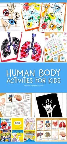 Human Body Activities For Kids Teaching kids all about their body has never been so interesting and fun This roundup includes free printables crafts art projects and mor. Educational Activities For Kids, Craft Activities For Kids, Kindergarten Activities, Educational Toys, Dementia Activities, Preschool Curriculum, Educational Websites, Craft Ideas, Science Crafts