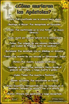 NUESTRA SEÑORA DE LOURDES...: APOSTOLES....
