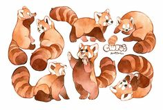 Animal Day: Red Pandas - My list of beautiful animals Cute Animal Drawings, Animal Sketches, Kawaii Drawings, Cute Drawings, Art Sketches, Amazing Drawings, Furry Art, Pretty Art, Cute Art
